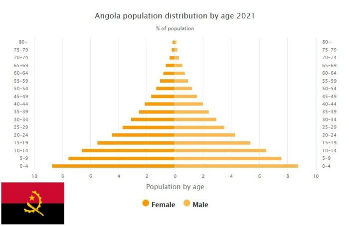 Angola Population Distribution by Age