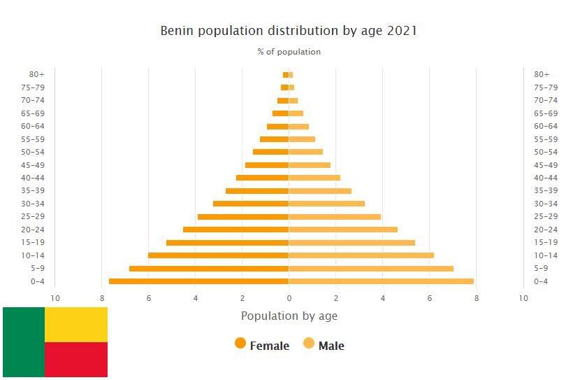 Benin Population Distribution by Age