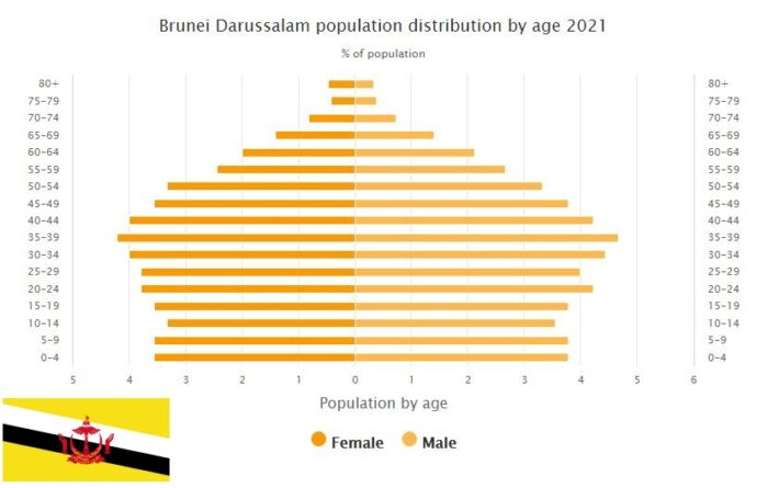 Brunei Population Distribution by Age