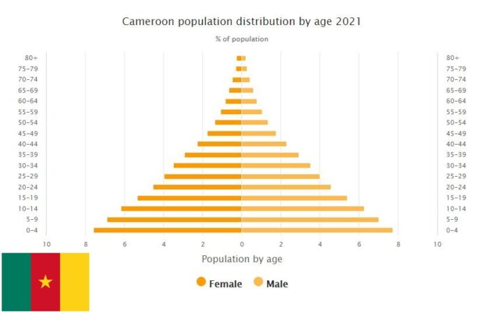Cameroon Population Distribution by Age