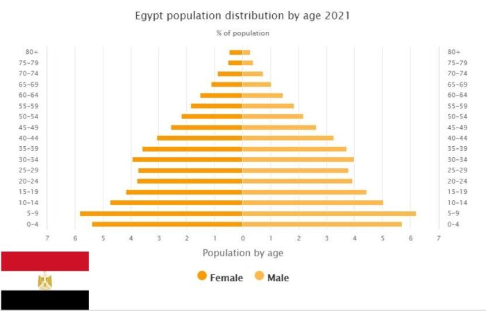 Egypt Population Distribution by Age
