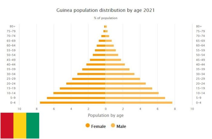 Guinea Population Distribution by Age