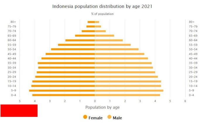 Indonesia Population Distribution by Age