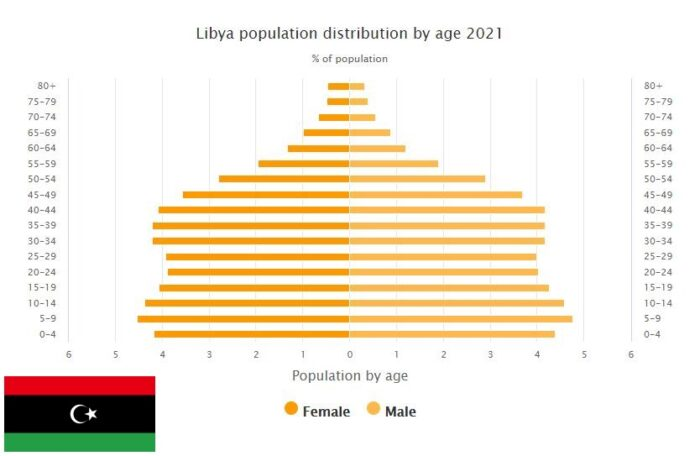 Libya Population Distribution by Age