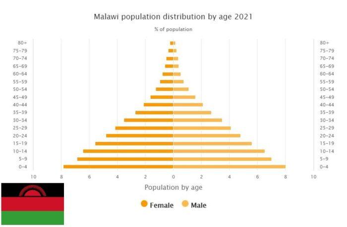 Malawi Population Distribution by Age