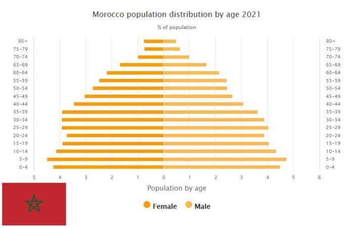 Morocco Population Distribution by Age