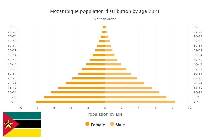 Mozambique Population Distribution by Age