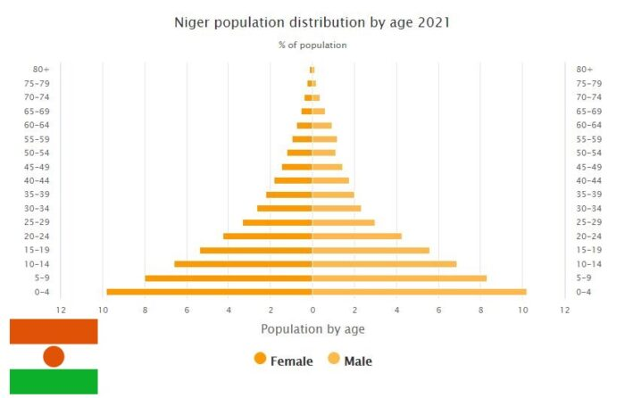 Niger Population Distribution by Age