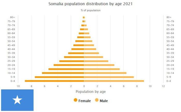 Somalia Population Distribution by Age