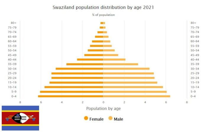 Swaziland Population Distribution by Age