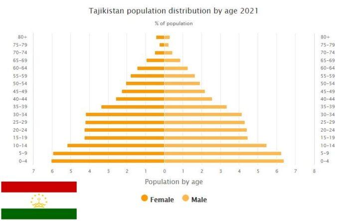 Tajikistan Population Distribution by Age