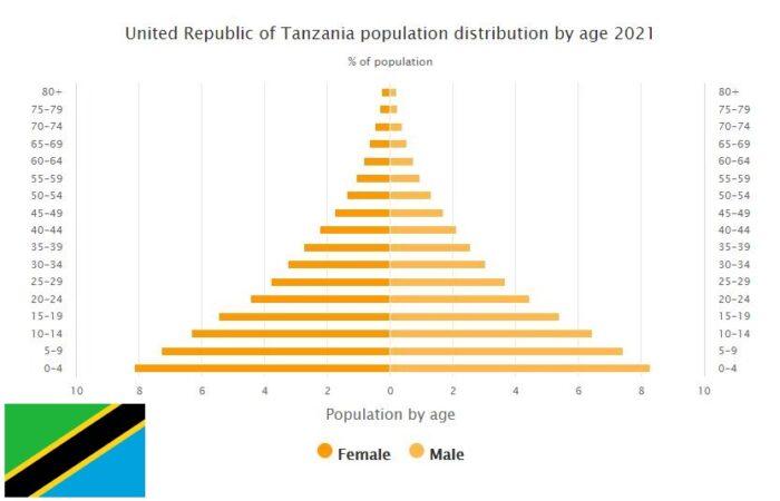 Tanzania Population Distribution by Age