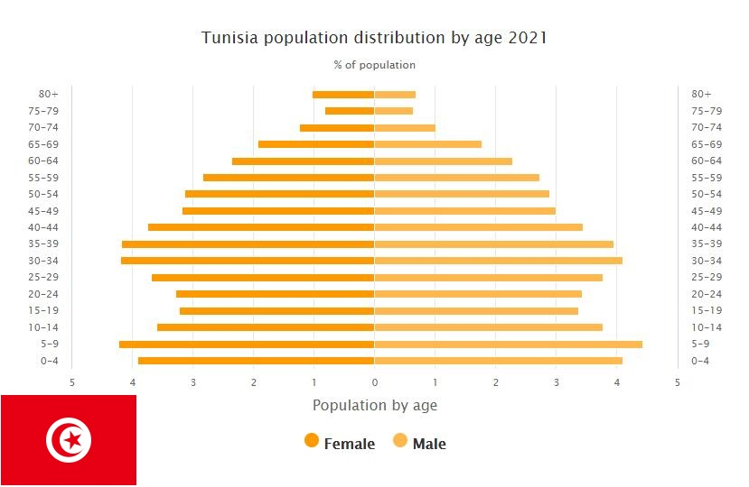 Tunisia Population Distribution by Age