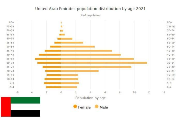 United Arab Emirates Population Distribution by Age
