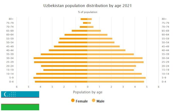 Uzbekistan Population Distribution by Age