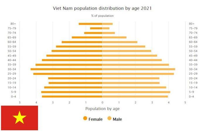 Vietnam Population Distribution by Age