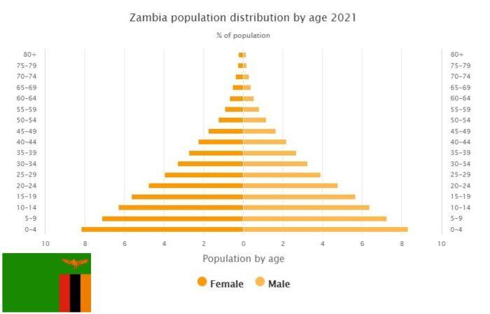 Zambia Population Distribution by Age